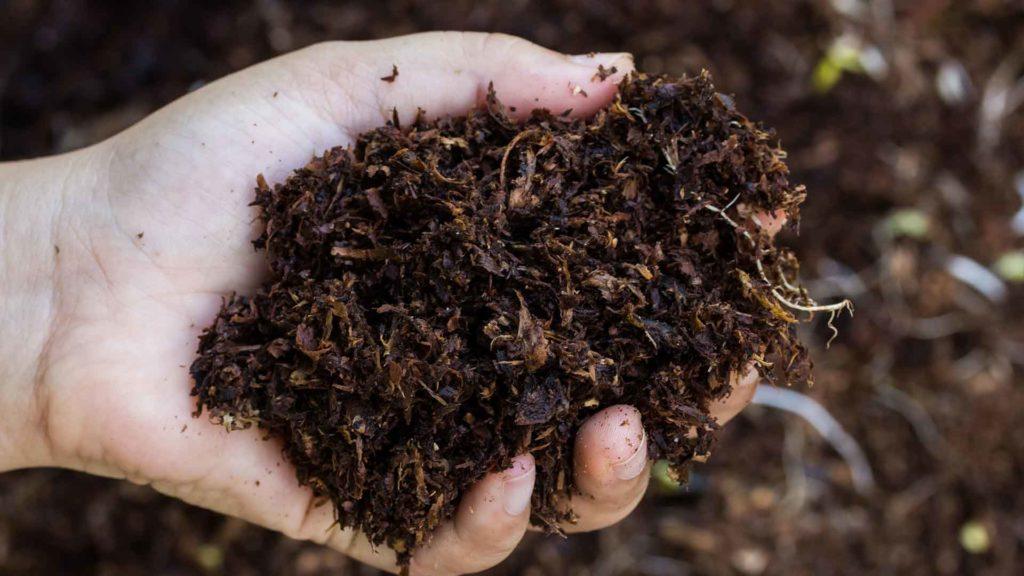 Garten-Fibel - Magazin - Reifer Kompost für einen perfekten Garten