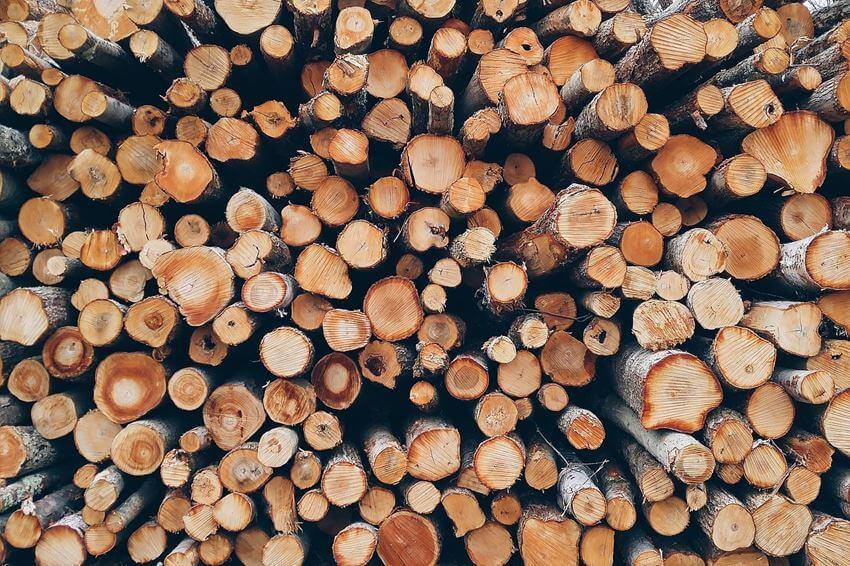 Wer viel Brennholz sägen will, benötigt eine ordentliche Wippkreissäge