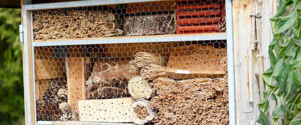 Ein gutes Beispiel für ein Insektenhotel mit vielfältigen Nisthilfen im Angeboit